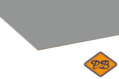 Afbeeldingen van kronospan hpl plaat color platina 0,8mmx305x132cm (kleurnummer: 0859 PE)